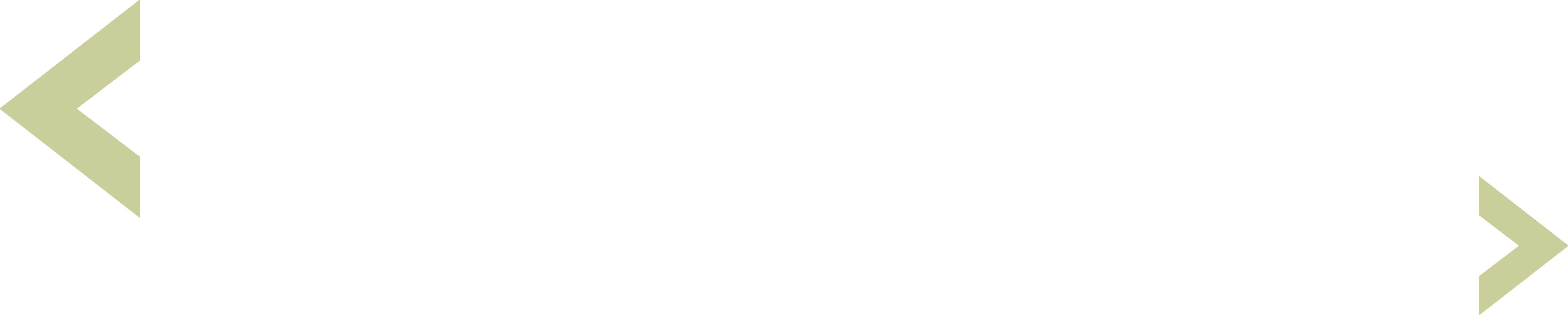 Proveer Logo