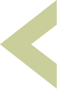 Proveer Logo Arrow