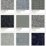 Shaw carpet samples (blue) image