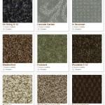 Shaw carpet samples (greens)