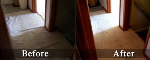carpet repair in Castle Rock