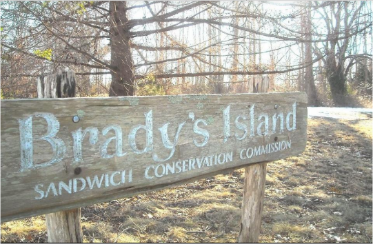 Brady's Island