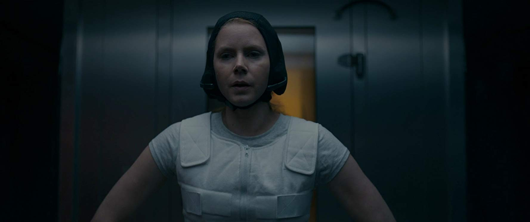 Louise Banks, Arrival (2016)