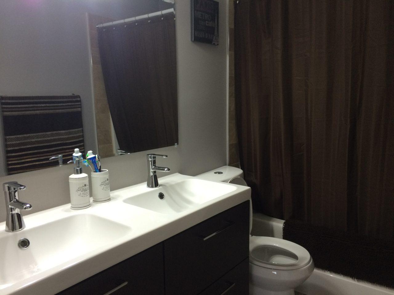 double-vanity