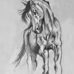 horse 8x10