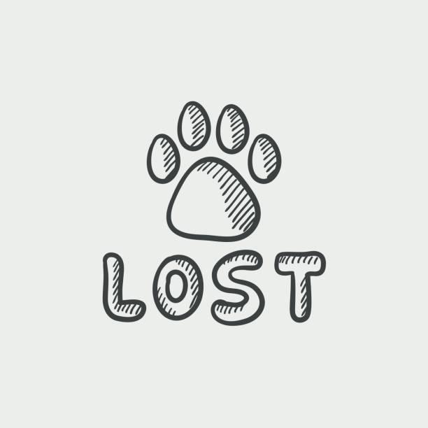 https://secureservercdn.net/50.62.88.95/vj8.a89.myftpupload.com/wp-content/uploads/2019/06/Lost.jpg?time=1590820639