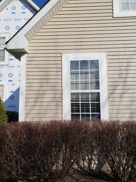 Siding Replacement and Trim (3)