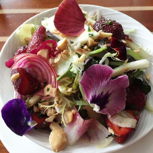 Fiola Mare Colors of the Garden Salad
