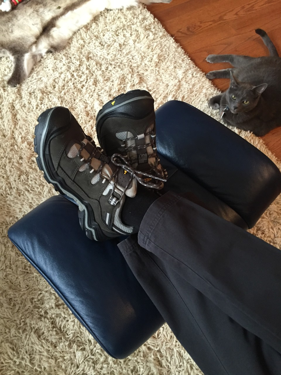 Travel Essentials for the frequent world traveler : Our cat Beaudelaire (Beau for short) admiring my Keen waterproof hiking shoes