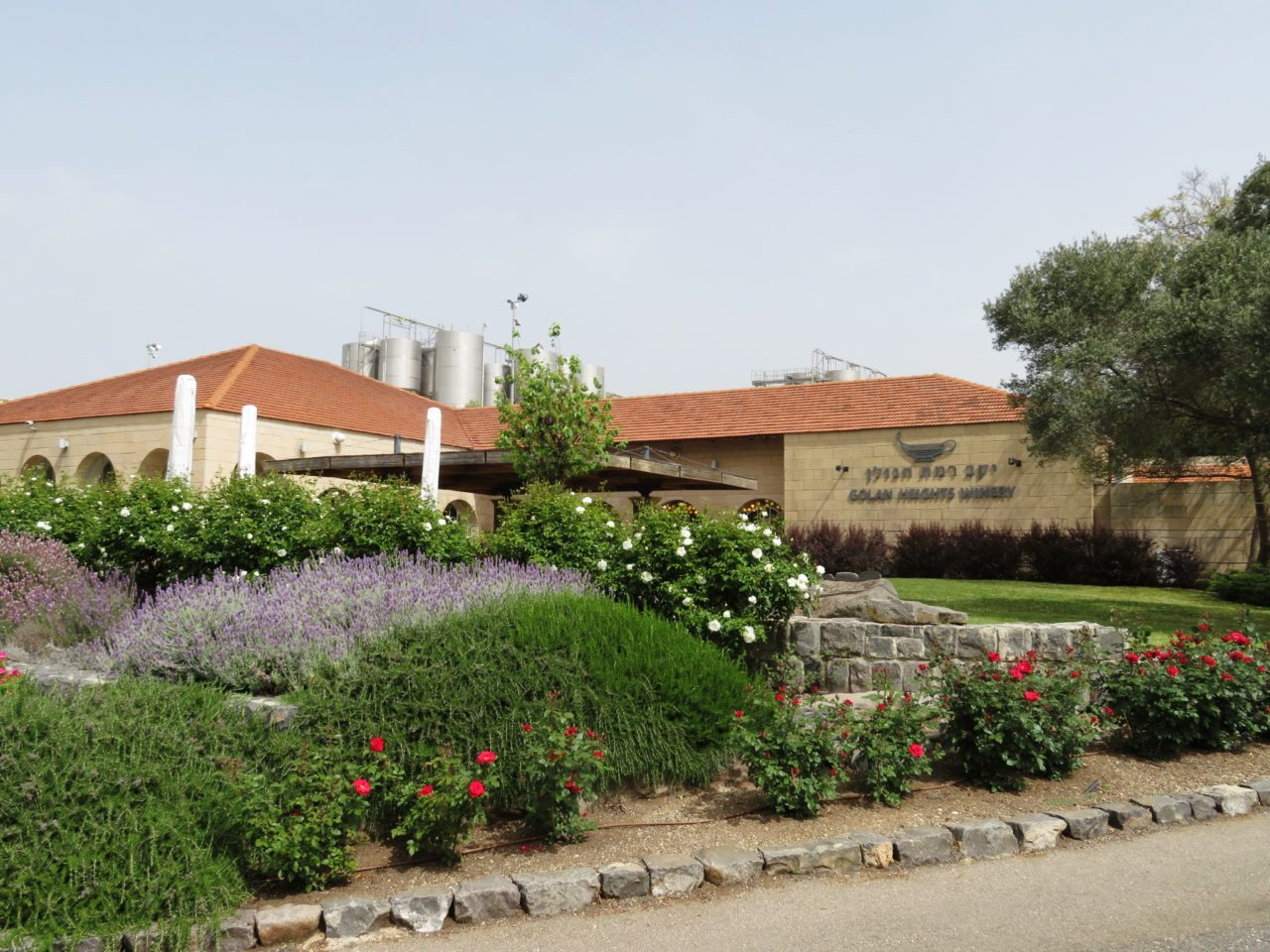 Amazing Israel ! Golan Heights Winery in Katzrin Israel, one of more than 300 new wineries sprouting up in Israel in the past twenty years