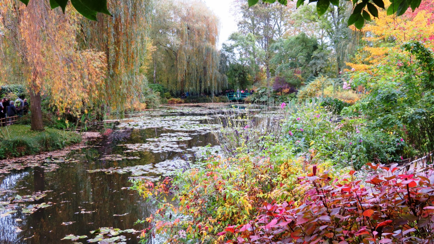 Claude Monet's Giverny ~ Paris and Normandie AmaWaterways Cruise