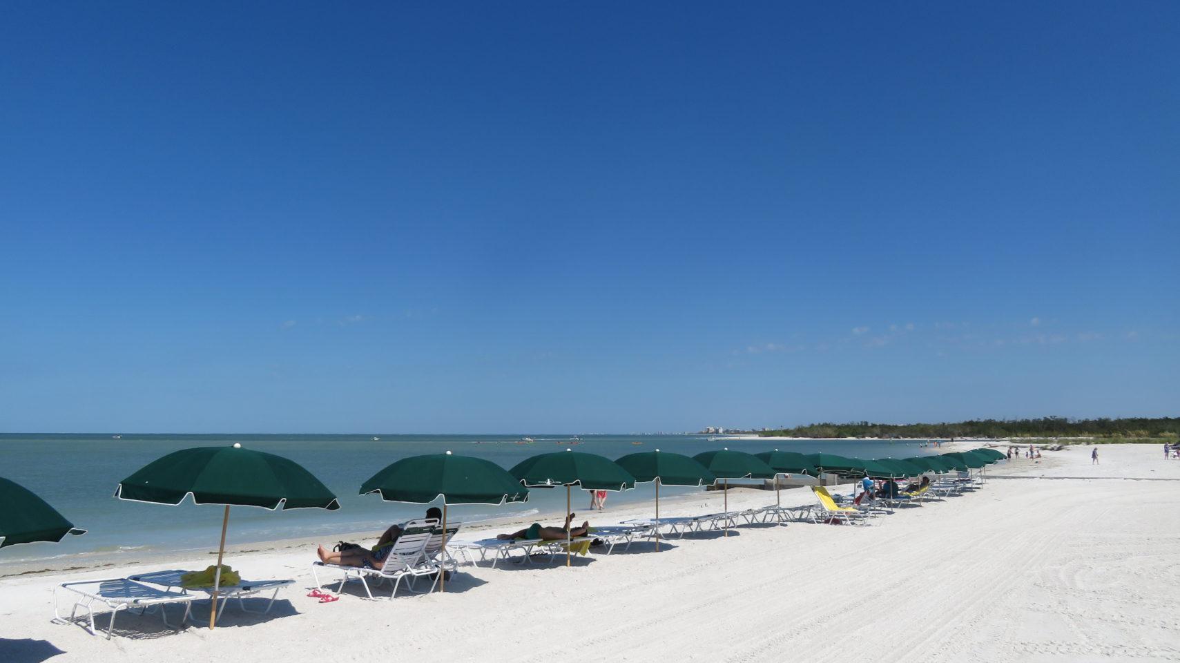 Pelican Landing Beach Park and Nature Preserve ~ Gem of a Florida Resort