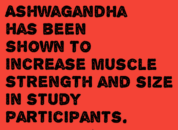Ashwagandha for Bodybuilding, Fat Loss and Muscle Growth - Pump Some