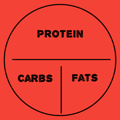 macronutrient infographic