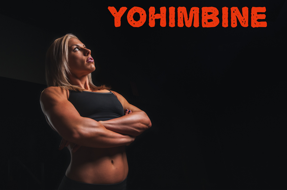 Yohimbine for Bodybuilding, Fat Loss and Energy