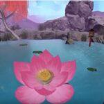 Lotus Pond Screen Image