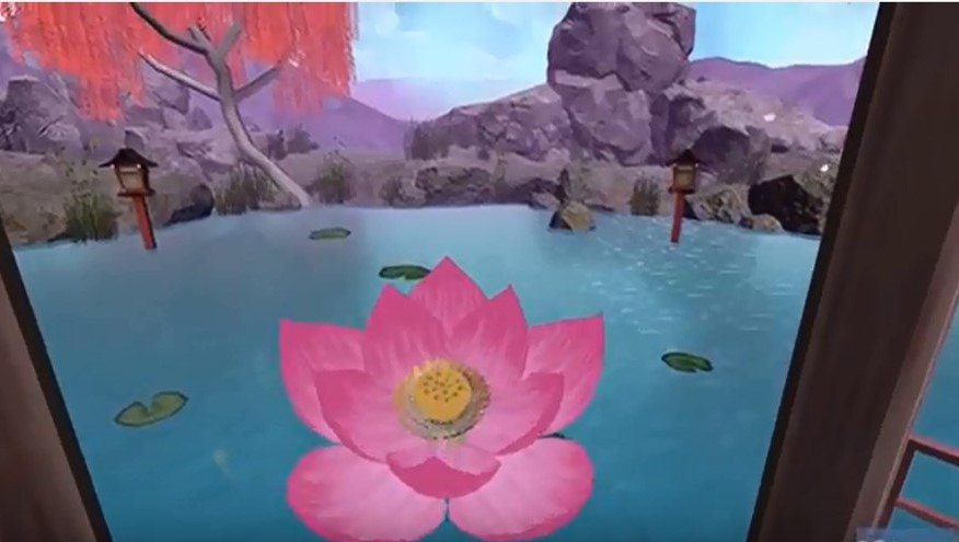 Lotus Pond Screen Image