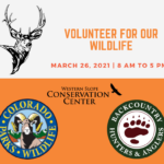 Volunteer for our wildlife ad