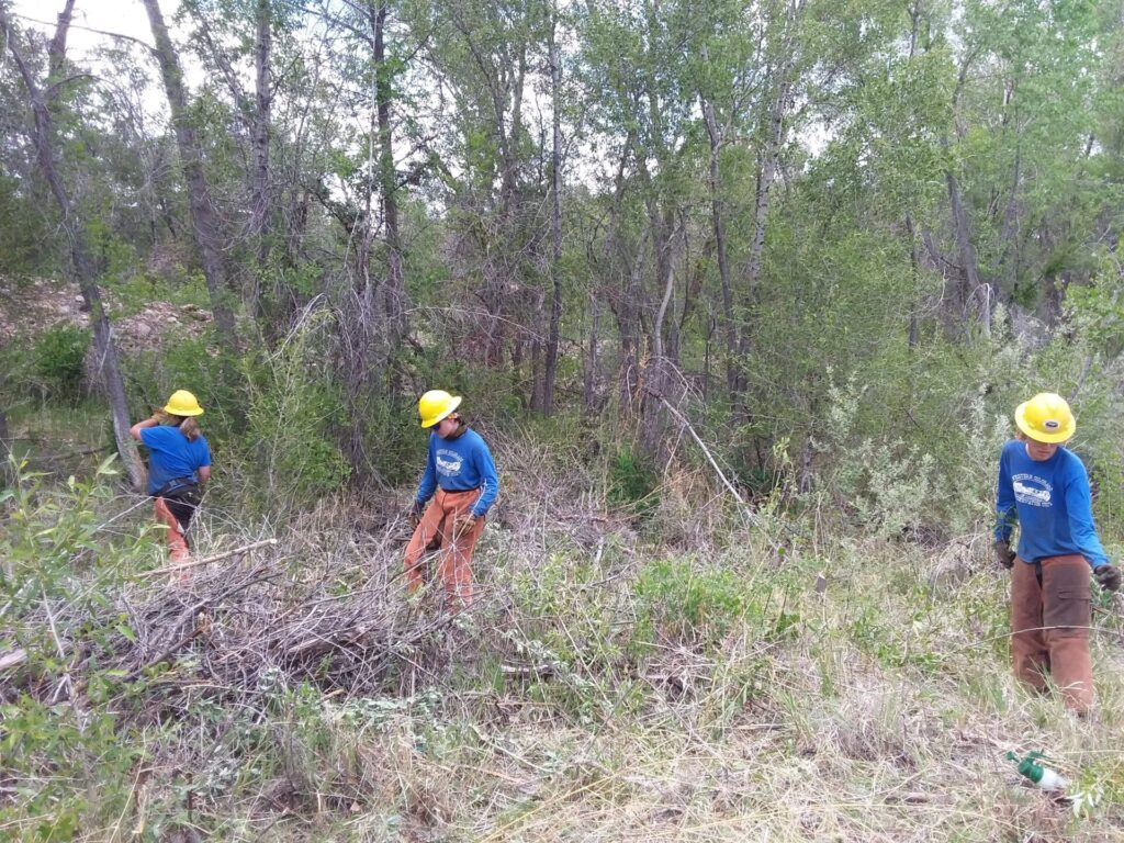 three WCCC crew members clear brush from a trail