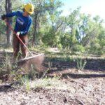 Trail crew member rakes out a trail