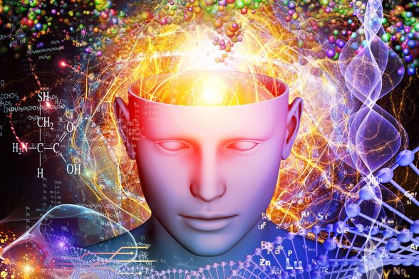 The Molecules of Emotion: Gut-Brain Health Solutions