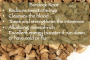 Burdock Root for Stress and Cravings