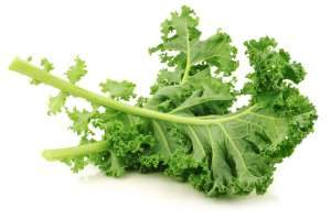Kale is very nutritious