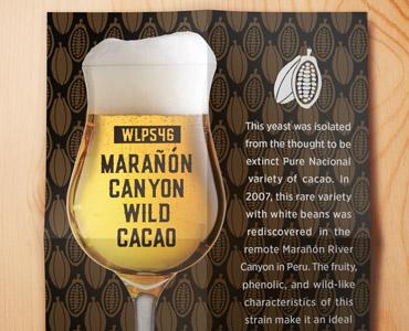 Marañón Canyon Wild Cacao Yeast