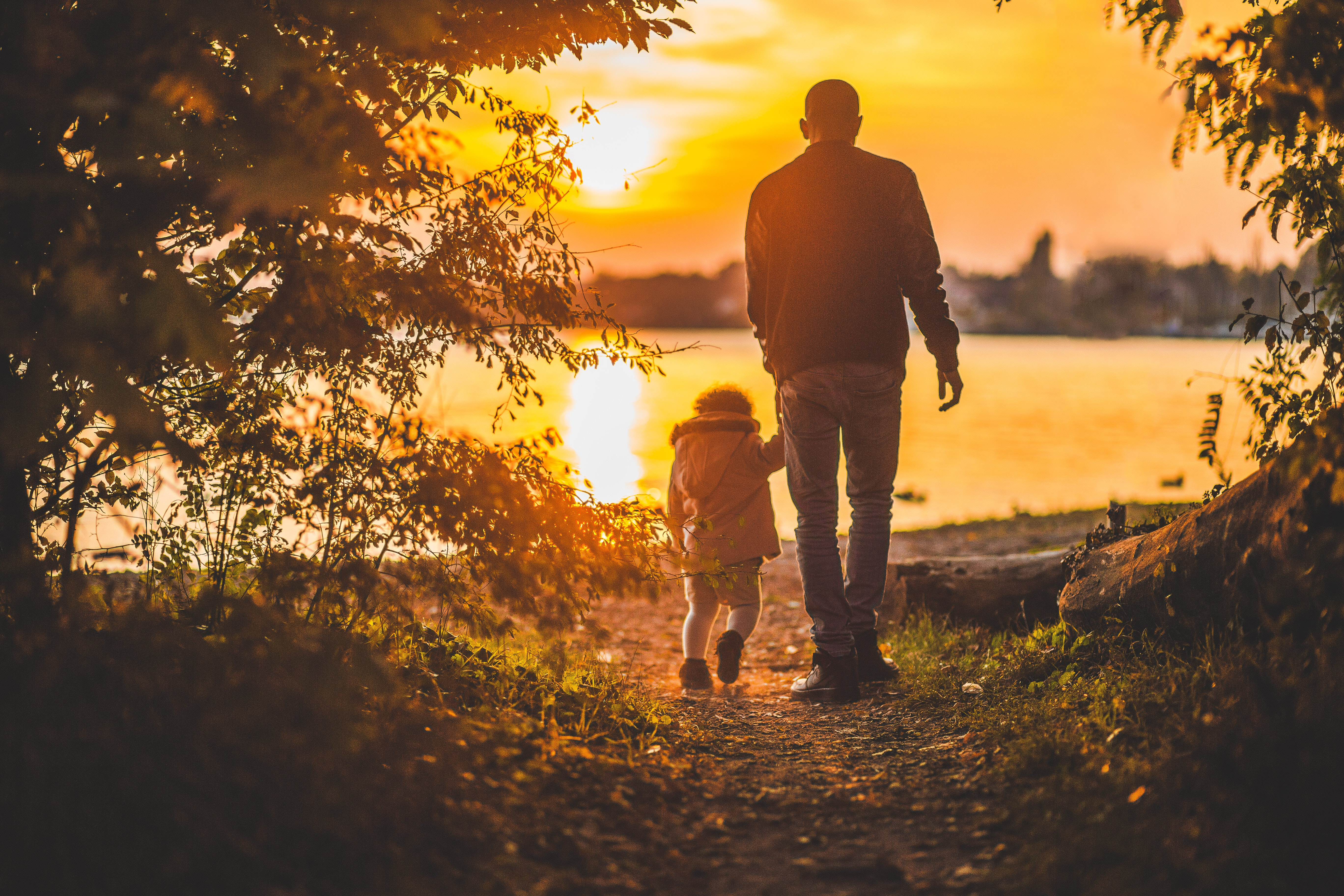 adult-child-dad-34014