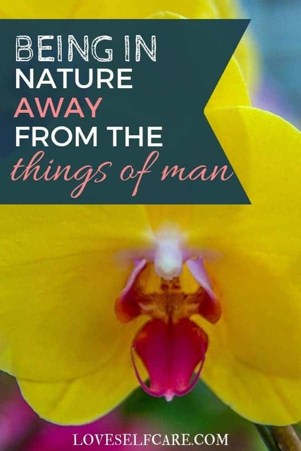 Why is being in nature so rejuvenating for you? Why you should spend time outside when you are feeling stressed and what it will do for you. #selfcare https://loveselfcare.com/being-in-nature-away-from-things-of-man/