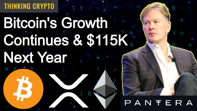 Read more about the article Dan Morehead Founder & CEO of Pantera Capital Interview