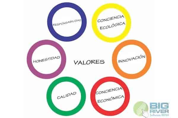 TIPOS DE VALORES