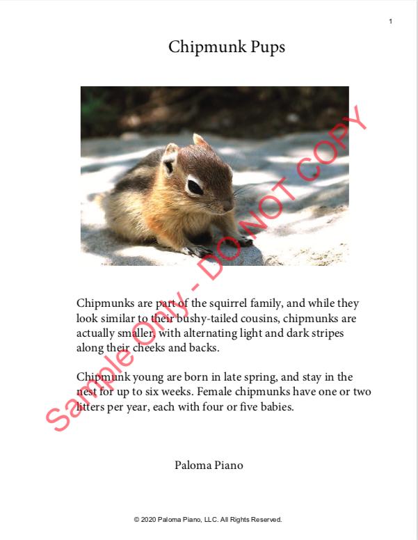 Paloma Piano - Spring Baby Animals - Chipmunk - Page 1