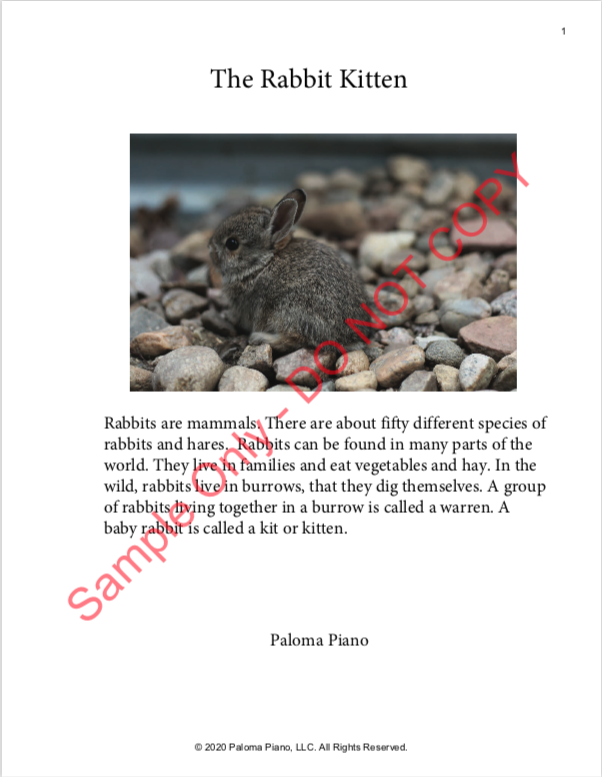 Paloma Piano - Baby Animals Spring - Rabbit - Page 1