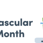 February is Cardiovascular Health Month!