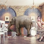 The elephant in the room - why should we consider spirituality in the pursuit of wellness?