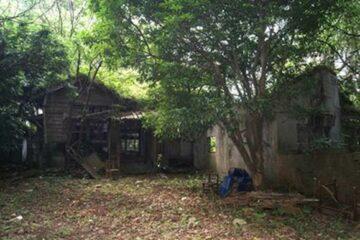 「新社樟林作業所」