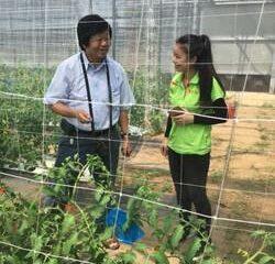 黃思庭新農上路漸入佳境 接受人工智慧栽培示範區