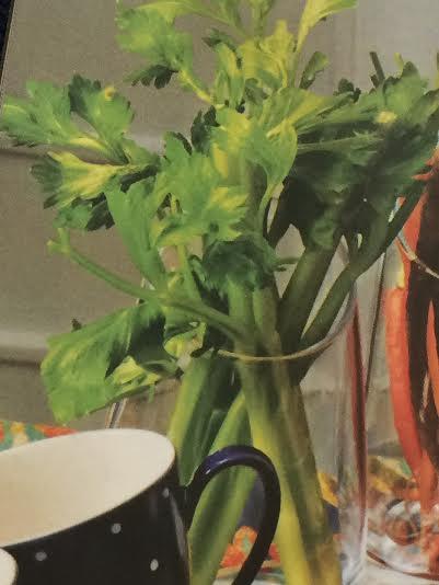 Celery Vase featured in Bloomingdale's catalog