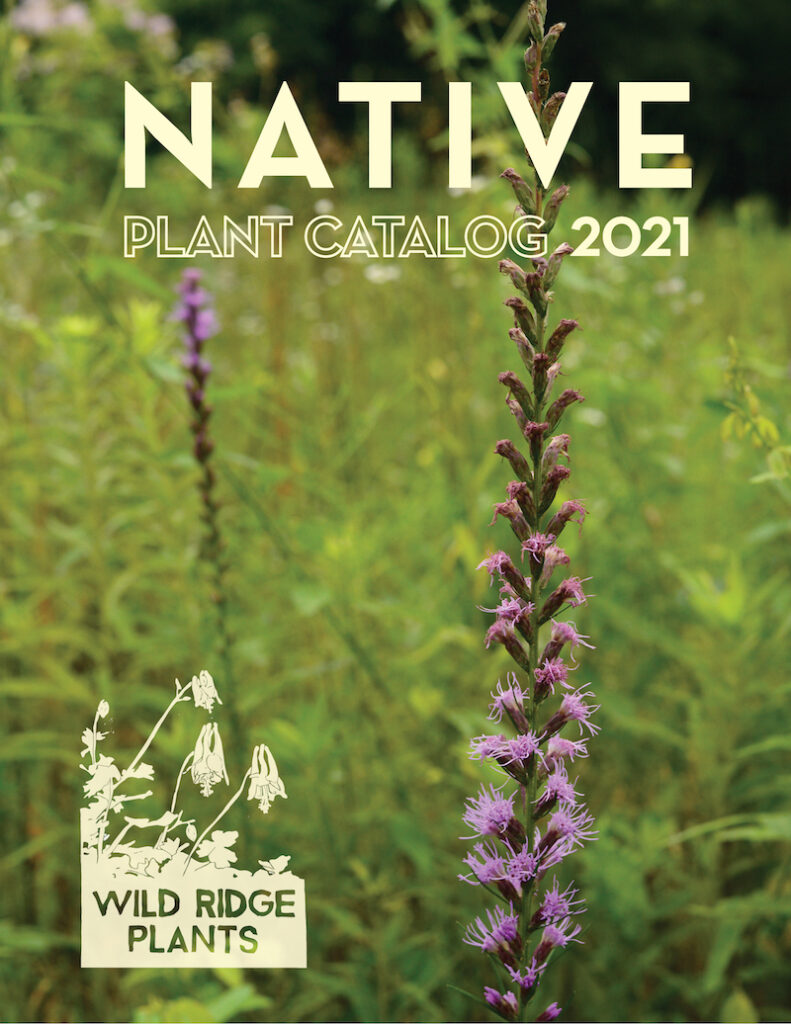 Wild RIdge Plants LLC 2021 Native Plant Catalog