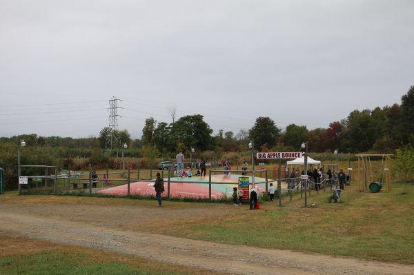 Hurds Family Farms