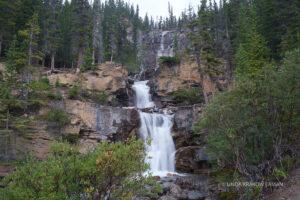 Multilevel waterfall cascades down a rocky, evergreen covered hillside