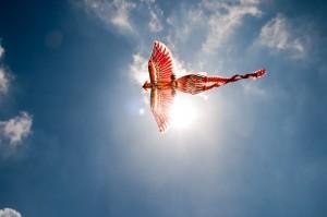 Flying the Firebird