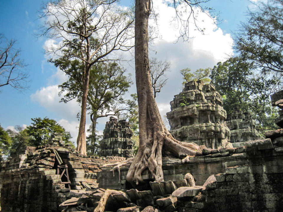 Ta Prohm or Jungle Temple - a temple whose renovation was completed by Archaeological Society of India in 2013