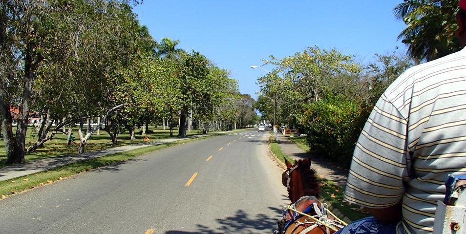 Buggy Ride within Playa Dorada Complex