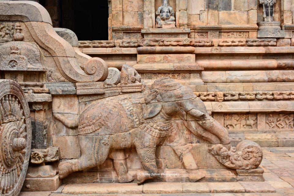 Elephant in the Battlefield