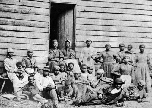 slavebreeding