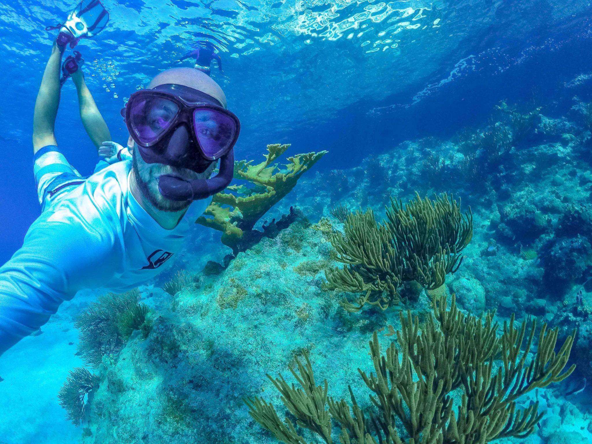 snorkel, underwater world, sea