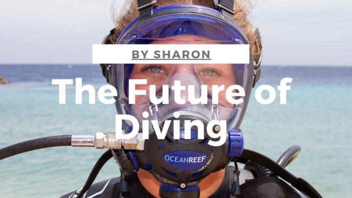 Full face diving IDM