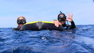 Freeding buoy on surface
